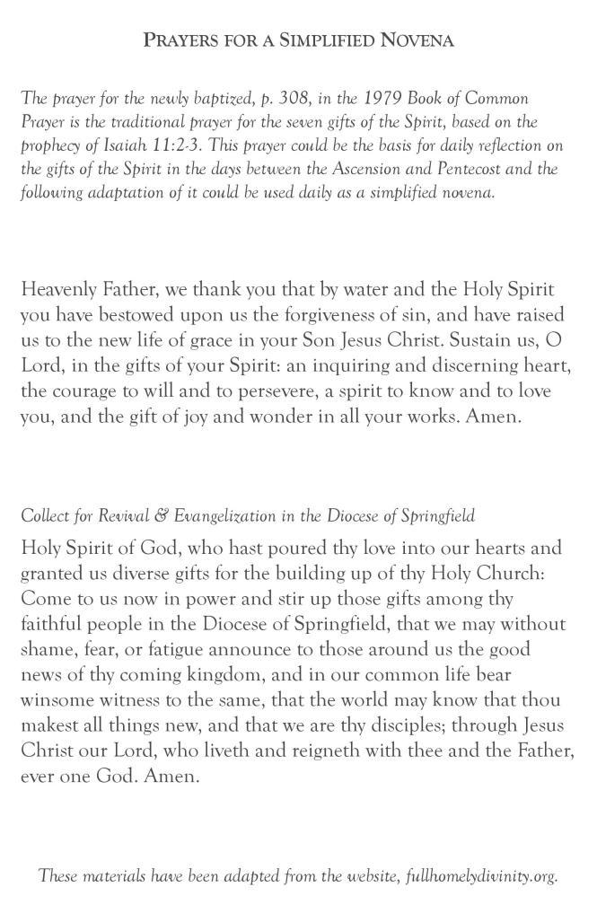 Diocesan Novena-page-008